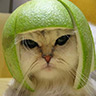 Portrait de kittyla